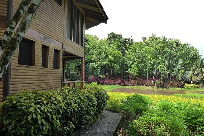 Macaw Lodge – Außenanlage rund um die Lodge