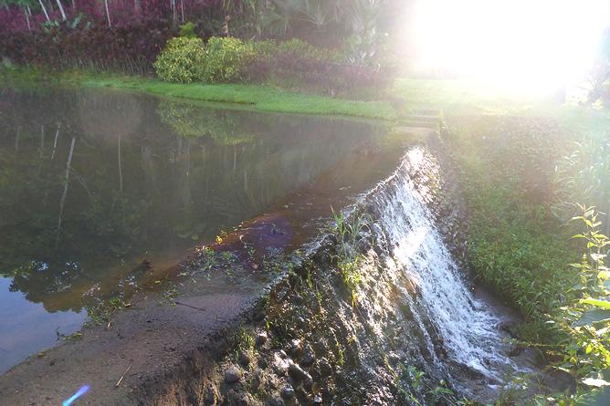 Macaw Lodge – Außenbereich Staudamm von Lagune