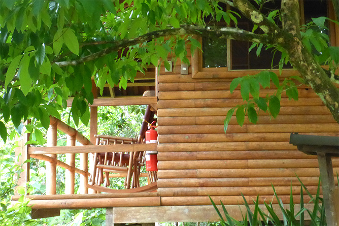 Macaw Lodge – Cabaña