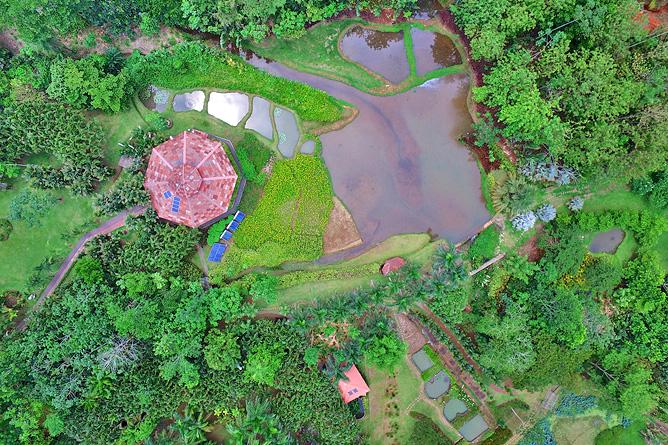 Macaw Lodge – Flugaufnahme