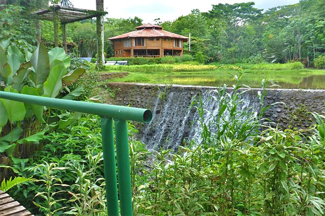 Macaw Lodge – Kleiner Staudamm für Lagune