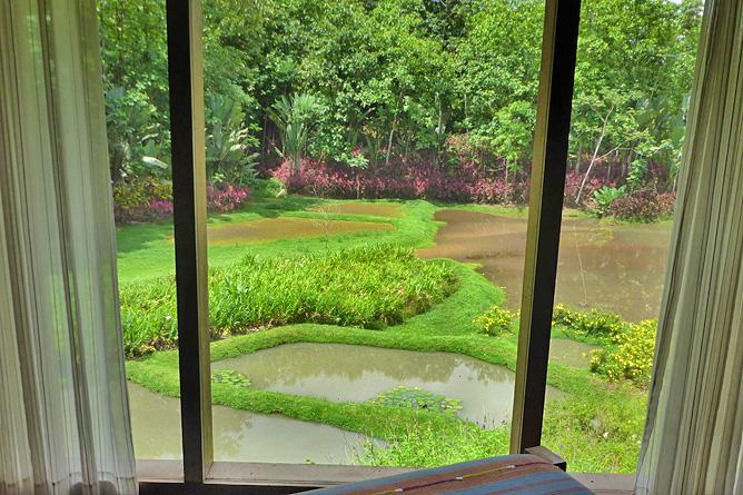 Macaw Lodge – Standard-Zimmer, Ausblick auf Lagune
