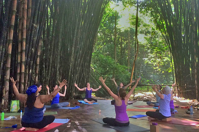 Macaw Lodge – Yogaplattform im Bambushain
