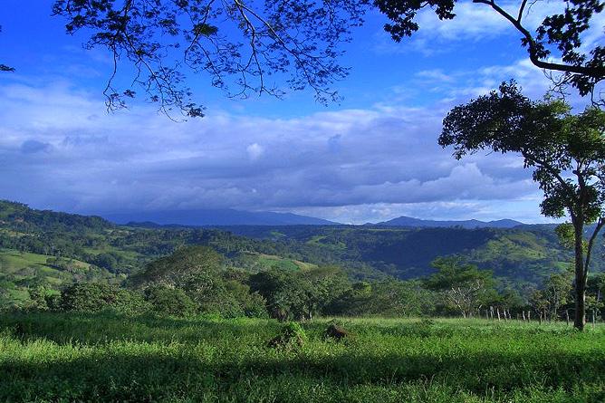 Cañas Castilla – Ausblick vom höchsten Punkt der Finca