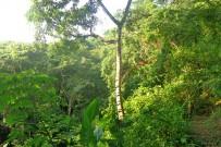 canas-castilla-Naturlehrpfad