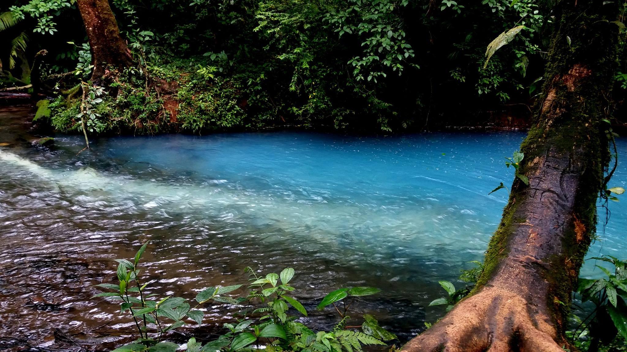 Catarata Rio Celeste – Activ: Río Celeste Färbung