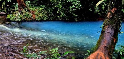 Catarata Río Celeste - Aktiv: Rio Celeste Färbung
