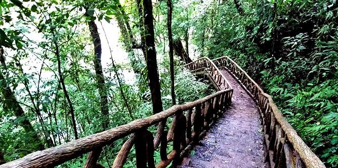 Catarata-Rio-Celeste_-Activ_Wanderweg-Rio-Celeste