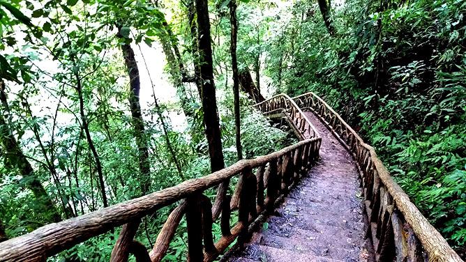 Catarata Río Celeste – Aktiv: Wanderweg Rio Celeste