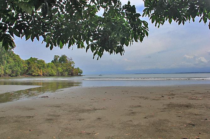 Isla Violín - Playa Violín