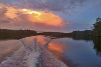 Isla-Violin_Sierpe-Fluss