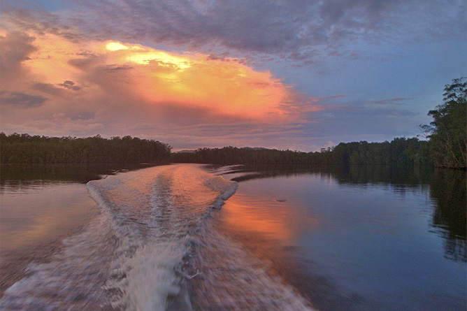 Isla Violín – Sierpe Fluss