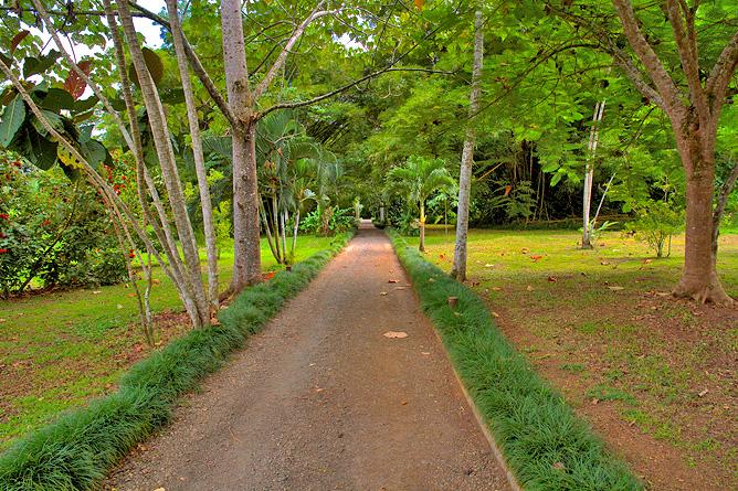 Maquenque Lodge – Einfahrt