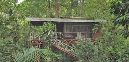 Maquenque-Lodge_Tree-House2