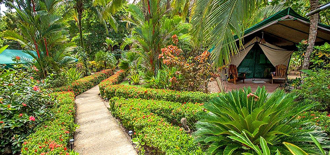 Rafiki Beach Camp – Gartenanlage