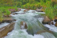 El-Pelicano_Fluss-Chirripó