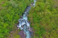 El-Pelicano_Fluss-Chirripo2