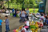El-Pelicano_San-Gerado-de-Rivas_Lokaler-Wochenmarkt