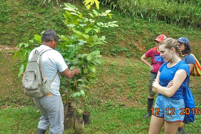 Los Campesinos Eco Lodge – Finca-Tour