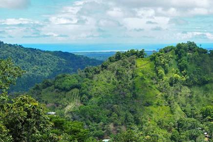 Los-Campesionos_Aussicht-auf-Pazifischen-Ozean
