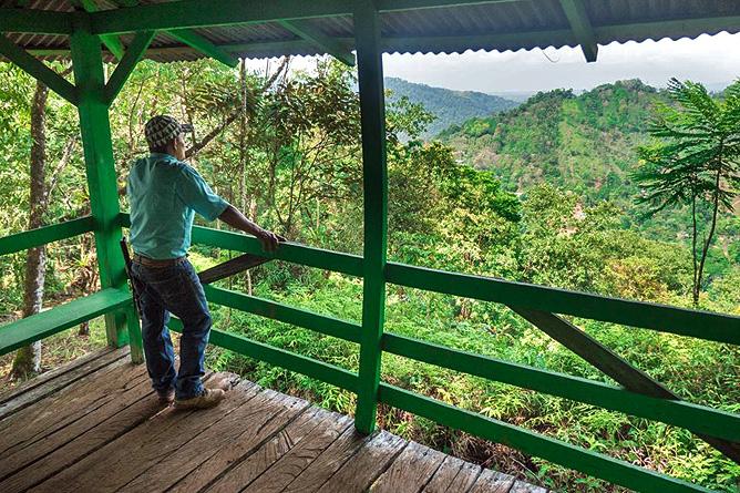 Los Campesinos Eco Lodge – Aussichtsplattform