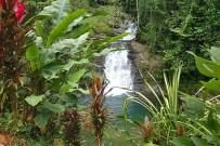 Los-Campesionos_Wasserfall4
