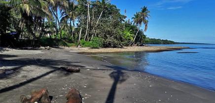 Playa-Negra_Cahuita_Foto-Christine