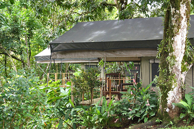 Rio Tico Lodge Safari-Tent-Bungalow
