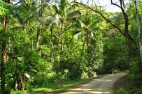 Rio-Tico-Lodge_-Zufahrtsstrasse