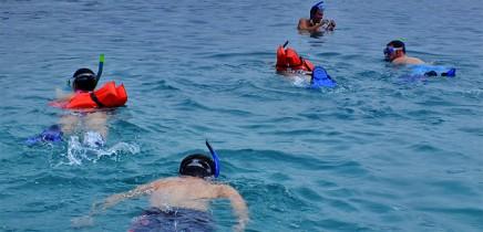 Schnorcheln-Nationalpark-Cahuita_Korallenriff_Foto-Cahuita-Tours