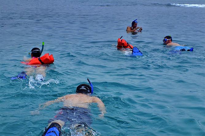 Schnorcheln Nationalpark Cahuita Korallenriff Cahuita-Tours