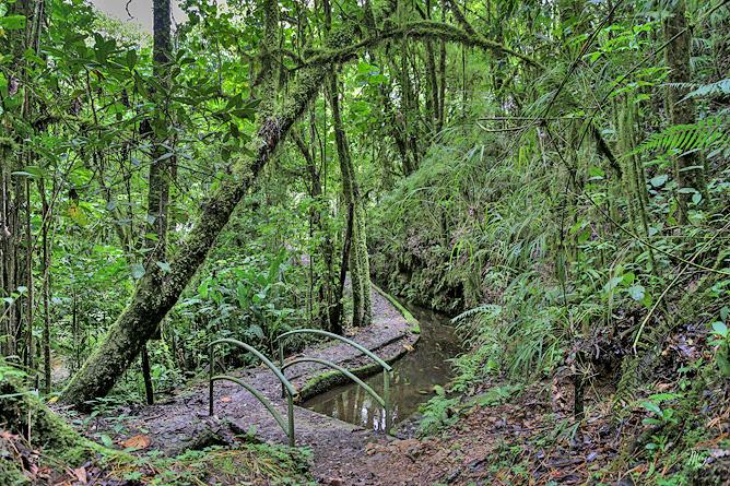 Sueños del Bosque – Wanderwege