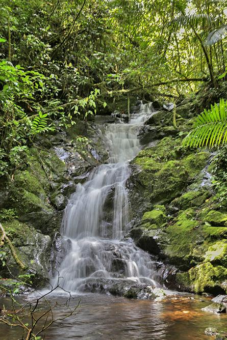 Sueños del Bosque – Wasserfall