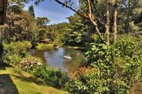 Suenos-del-Bosque_Blick-auf-den-See