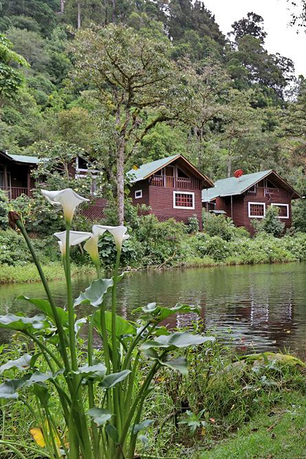 Sueños del Bosque – Bungalows am See