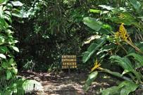 Suenos-del-Bosque_Garten_Einstieg-Wanderweg
