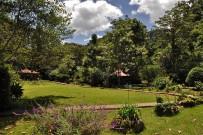 Suenos-del-Bosque_Gartenanlage