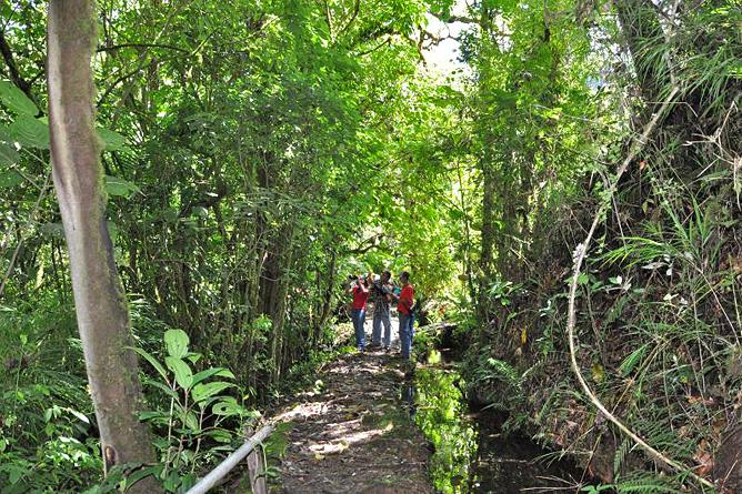 Sueños del Bosque – Naturwanderungen