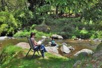 Suenos-del-Bosque_Relaxen-am-Fluss