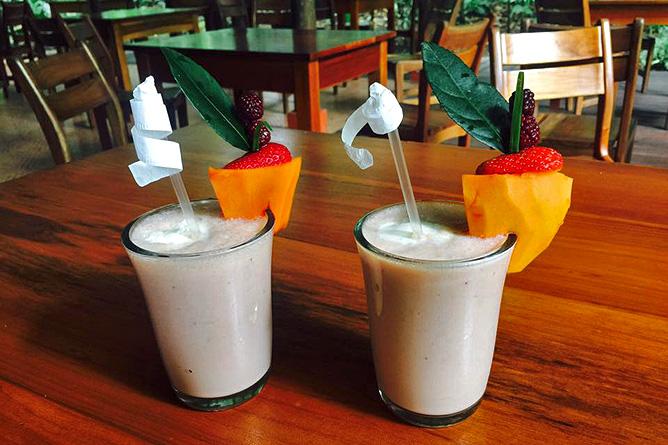 Arenal Oasis Bar