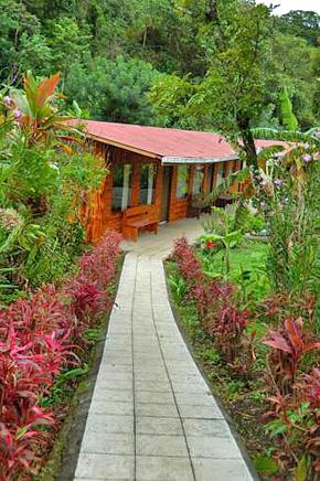 El Bosque Zimmer Zugang