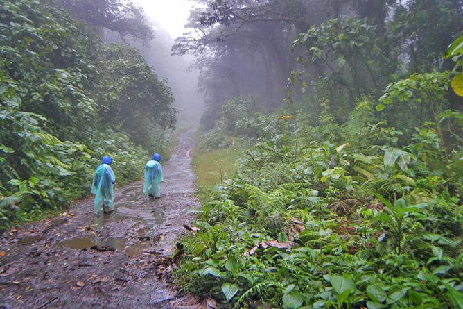 Santa Elena Reservat Ocotea Tours