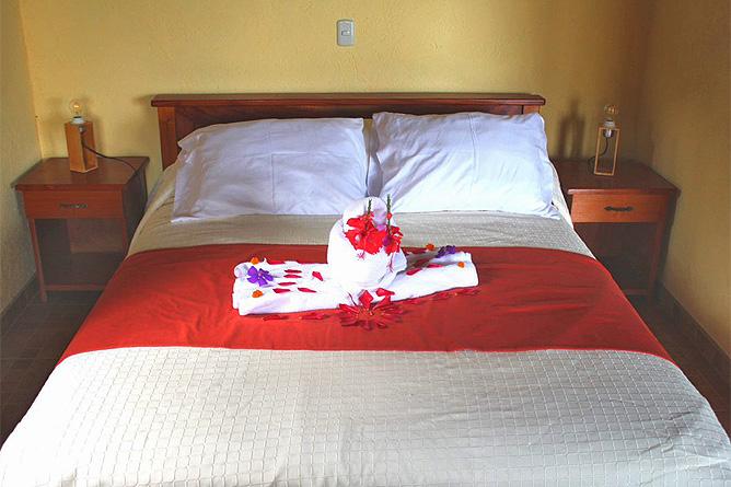 Ceiba Tree Lodge Standard-Zimmer Doppelbett
