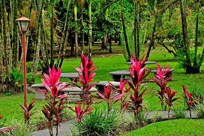 Country Inn Arenal Garten