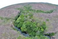 Guanacaste_Nationalpark Santa Rosa_Trockenwald_Foto Micha 23-09-2017