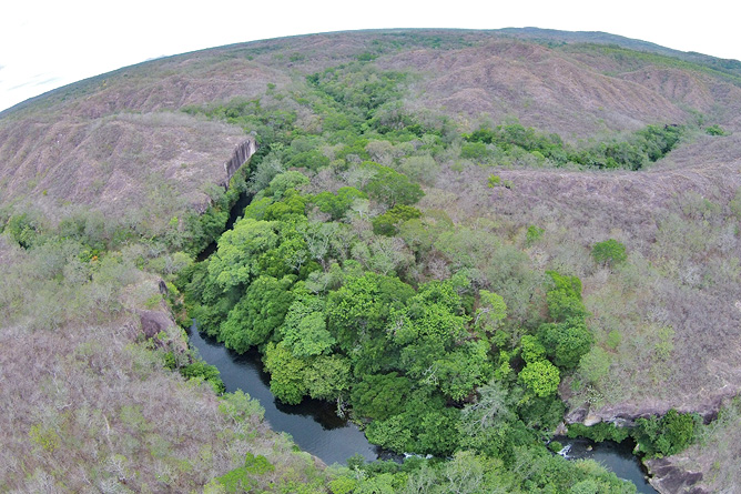 Guanacaste Nationalpark Santa Rosa Trockenwald