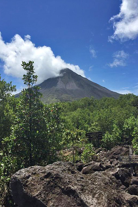 La Ceiba Umgebung Vulkan-Arenal