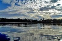 Meeresschildkröten_Tortuguero-Nationalpark_2_Foto-Micha-23-10-2017