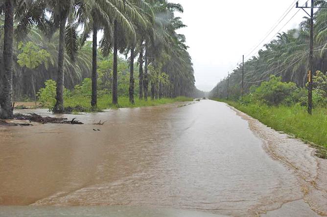 Sierpe Überflutung 06-10-2017 (Foto: Cortesia Claudia Langguth, Sierpe)