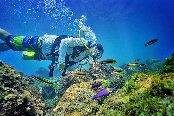 Tauchen in den Korallenbänken